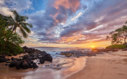 Обои Берег острова на закате солнца