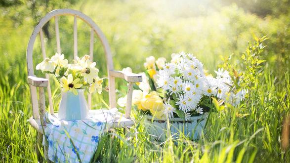 Обои Стул с вазочкой, полной цветами, рядом ведерко с ромашками