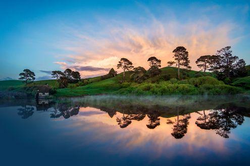 Обои Деревья на холме у озера на фоне неба