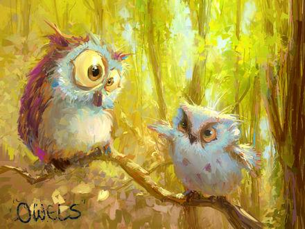Обои Сова и совенок сидят на ветке дерева, by MarcoBucci