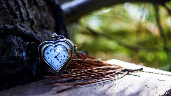 Обои Часы в виде сердечка на скамейке у дерева