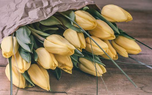 Обои Букет нежно желтых тюльпанов лежит на столе