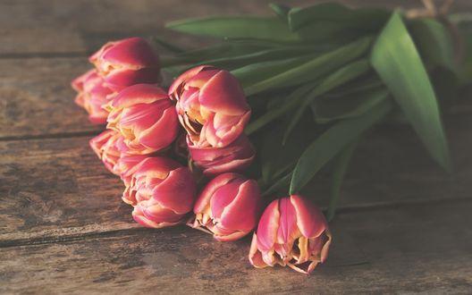 Обои Букет розово-желтых тюльпанов лежит на деревянной поверхности