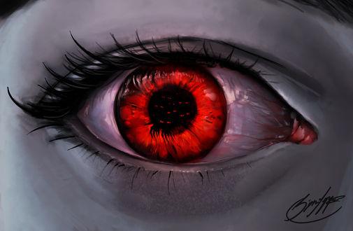 Обои Крупным планом красный глаз, by SigneRJArts