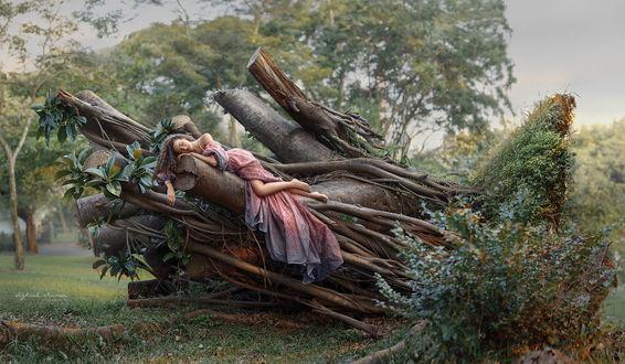 Обои Красивая девушка лежит на поваленном дереве, Фотограф Iryna Dzhul / Ирина Джуль