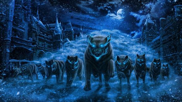 Обои Ночью в полнолуние стая волков с горящими глазами, ведомая вожаком, бегут по улице средневекового города