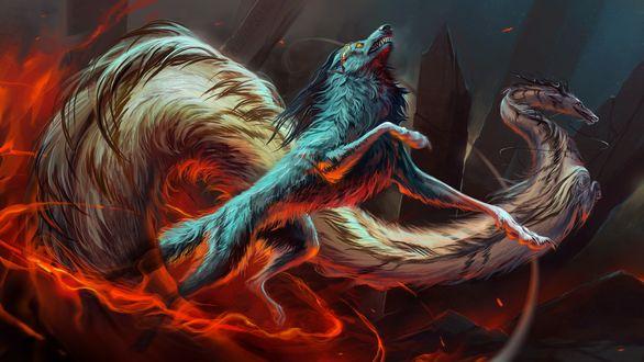 Обои Фантастические животные - дракон рядом с волком - оборотнем