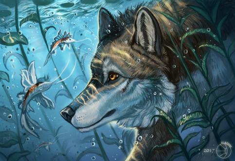 Обои Волк под водой смотрит на рыбку, by FlashW