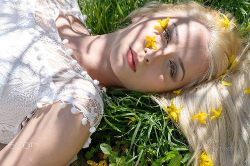 Обои Девушка лежит на зеленой траве с весенними цветочками на ней, фотограф Peter Buchacher