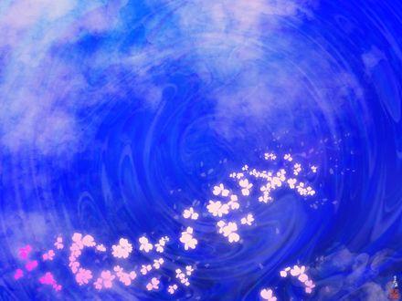 Обои Цветочки и облака на небе