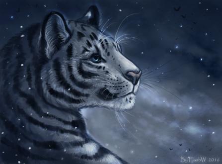 Обои Портрет белого тигра в профиль на фоне падающего снега, by FlashW