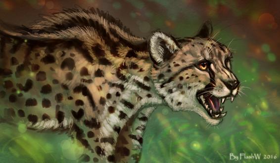 Обои Портрет гепарда на размытом фоне, by FlashW
