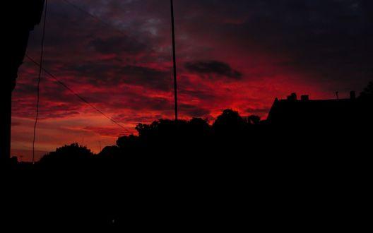 Обои Красное небо с тучками, подсвеченное закатом, и черная линия деревьев и зданий на фоне надвигающейся ночи