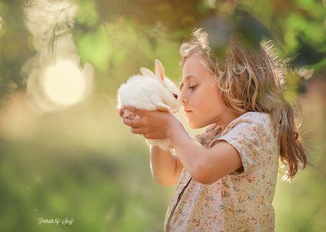 Обои Девочка с кроликом на руках, фотограф Suzy Mead