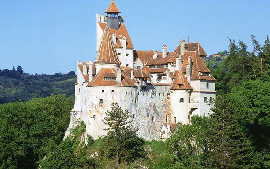 Обои Замок Дракулы на зеленом холме, Трансильвания, Румыния