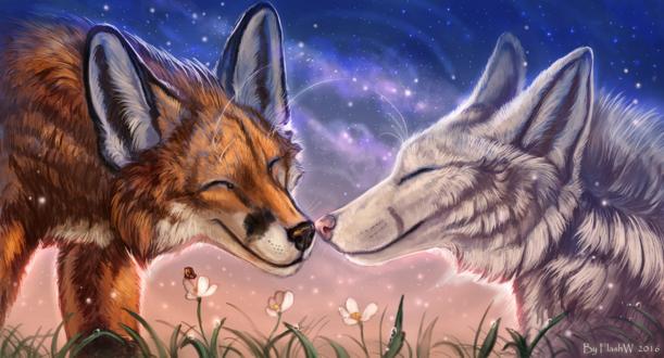 Обои Лис с белым волком на фоне природы, by FlashW
