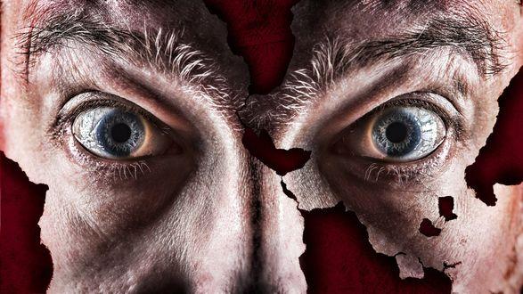 Обои Пронзительные глаза под густыми бровями
