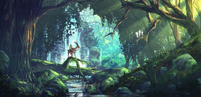 Обои Принцесса Мононоке / Princess Mononoke на олене у водопада