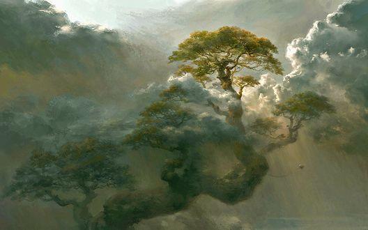 Обои Огромное дерево в облаках