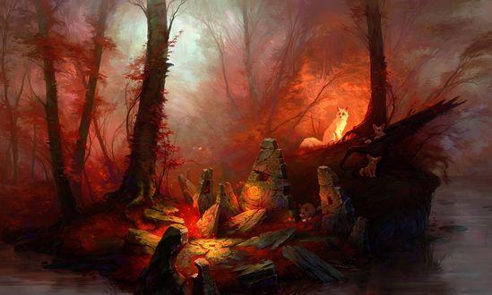 Обои Лисья семья в осеннем лесу у ручья