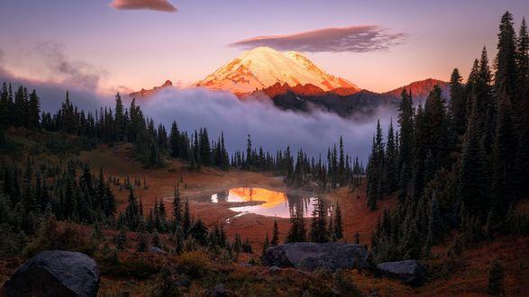Обои Озеро Tipsoo / Типсу перед горами в тумане, Mount Rainier National Park / Национальный парк Маунт-Рейнир, фотограф Steve Schwindt