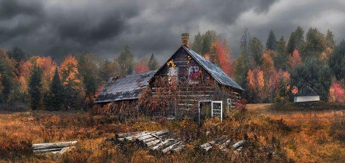 Обои Заброшенный дом возле осеннего леса