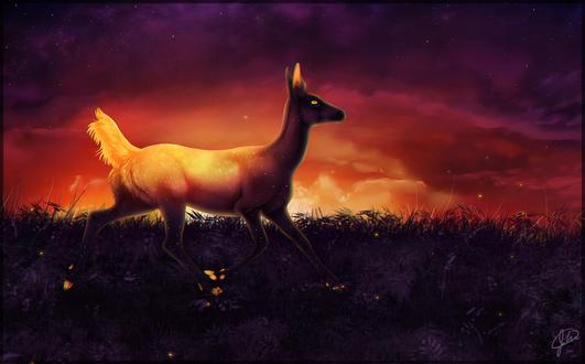Обои Мистический олень на фоне заката, by alcinda