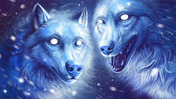 Обои Два мистических белых волка, by Alaiaorax