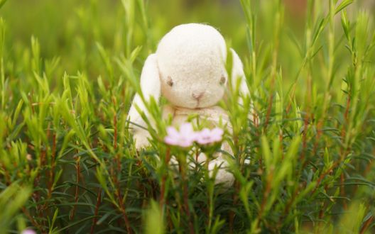 Обои Игрушка зайца в траве