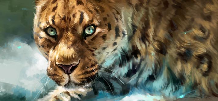 Обои Портрет леопарда, by SalamanDra-S