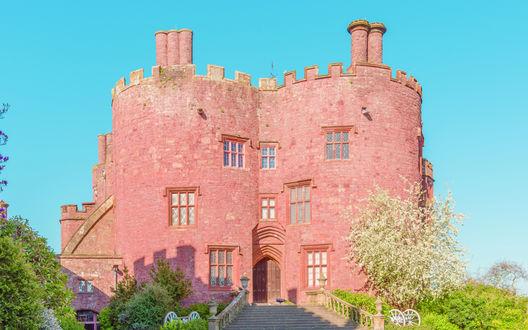 Обои Башенки и каменная лестница замка Powis Castle, Welshpool, Wales, United Kingdom / Уэльс, Великобритания на фоне голубого неба, рядом цветущие заросли