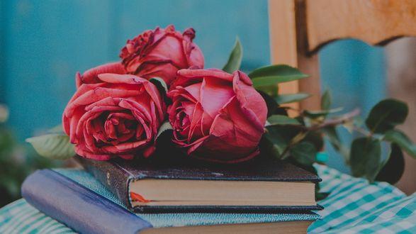 Обои Красные розы лежат на книгах