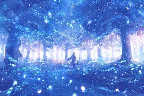 Обои Девушка в сказочном лесу, by bounin
