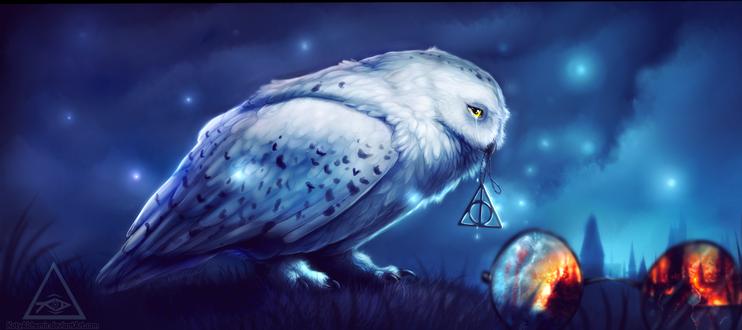 Обои Белая сова на фоне ночного неба, by SquatinaCaprium
