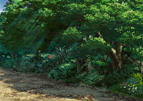 Обои Деревья с зеленой листвой у дороги
