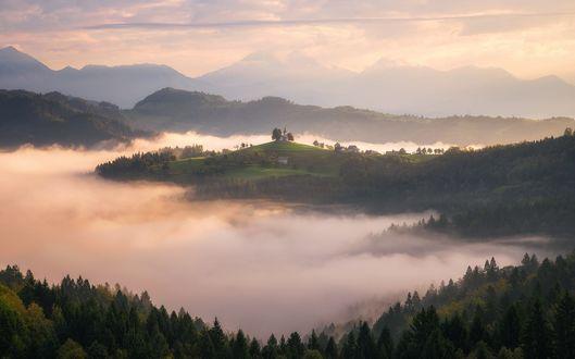 Обои Утро в Словении, фотограф Daniel F