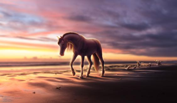 Обои Лошадь идет по побережью, by Fiirewolf