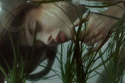 Обои Девушка под водой, фотограф Marta Bevacqua