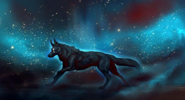 Обои Бегущий в космосе волк, by JadeMere