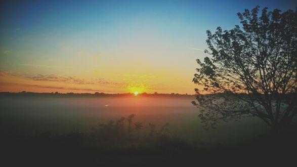 Обои Восход солнца, туман стелется по полю