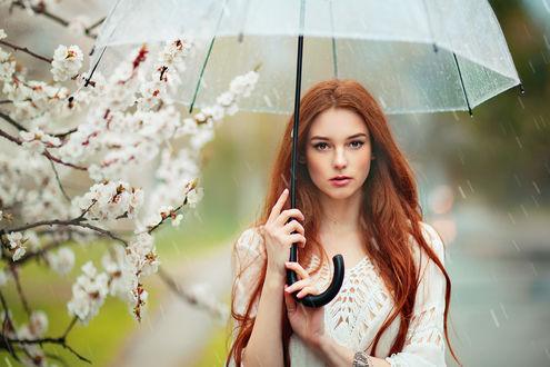Обои Милая девушка Александра с зонтом под весенним дождем, фотограф Ольга Бойко
