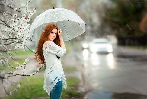 Обои Милая девушка Александра с зонтом под весенним дождем стоит у дороги, фотограф Ольга Бойко