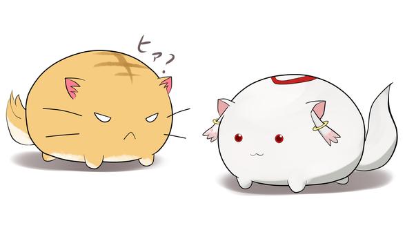 Обои Круглые кошки из аниме Хроники Пуфика / Poyopoyo Kansatsu Nikki