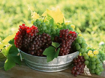 Обои Блюдо с красным и белым виноградом на деревянном столе