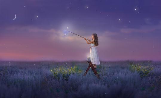 Обои Работа Дотянуться до мечты, девочка стоит на лестнице стоит в цветочном поле, пытаясь поймать звезду. Фотограф Ольга -Moskaltsova Olga