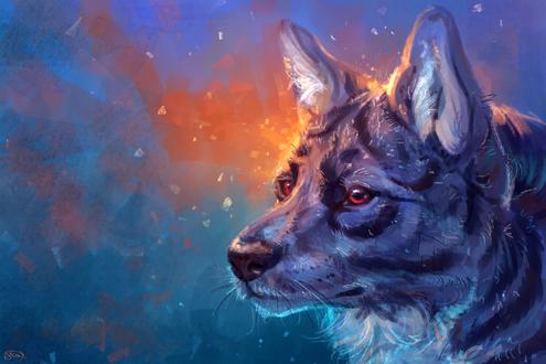 Обои Портрет серого волка, by AlaxendrA