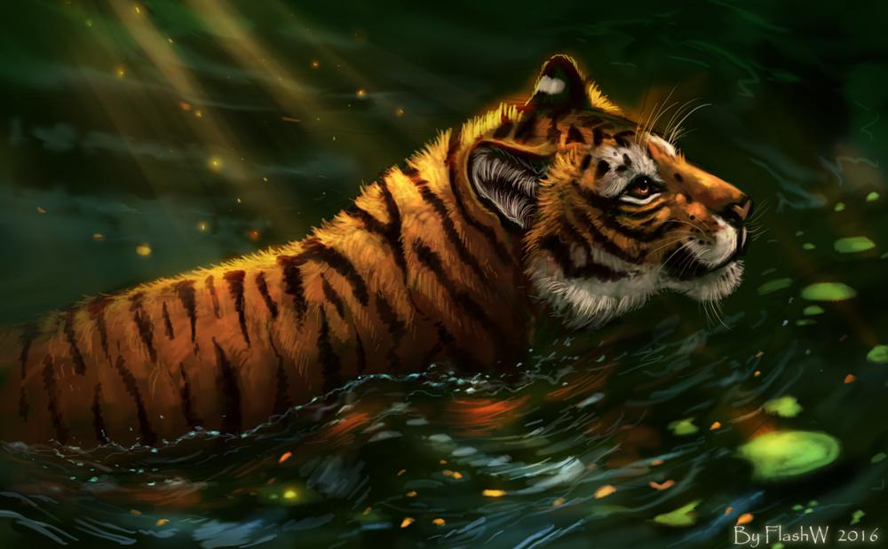 Обои для рабочего стола Тигр освещен солнцем идет в воде, by FlashW