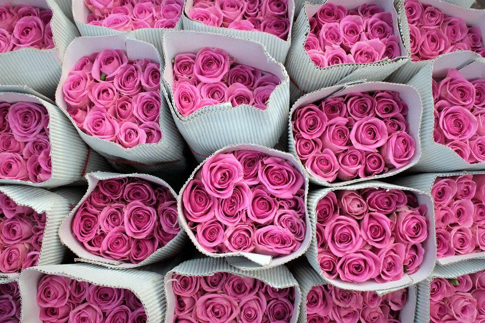 Обои для рабочего стола Букеты розовых роз