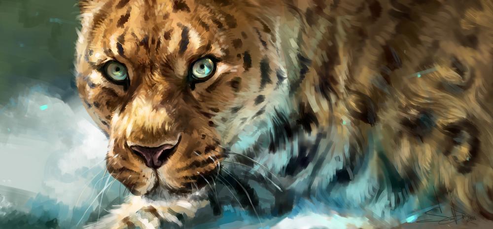 Обои для рабочего стола Портрет леопарда, by SalamanDra-S