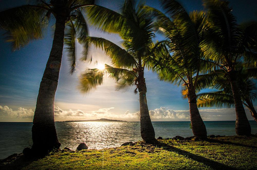 Обои для рабочего стола Пальмы на тропическом побережье океане в предзакатном освещении заходящего солнца